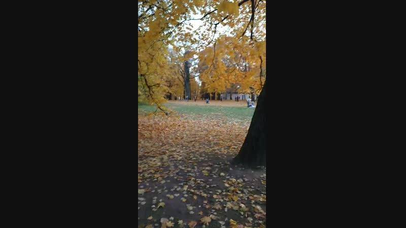 Золотая осень в Коломенском 1