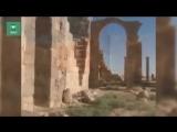 Сирия: ФАН побывал в разрушенном боевиками дворце в районе Пальмиры