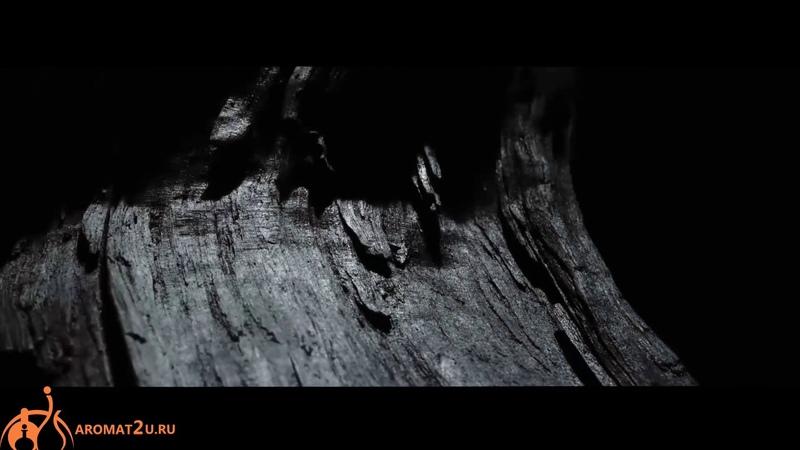 Tom Ford Oud Wood / Том Форд Уд Вуд - отзыв о духах