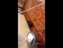 В Ростове тусят под мою песню Ночь любви Очень приятно 👍👍👍🎵🎼 ИраМаксимова авторИсполнитель моётворчество ПесняИдётвН
