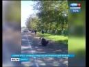 Смертельное ДТП произошло в Черемховском районе