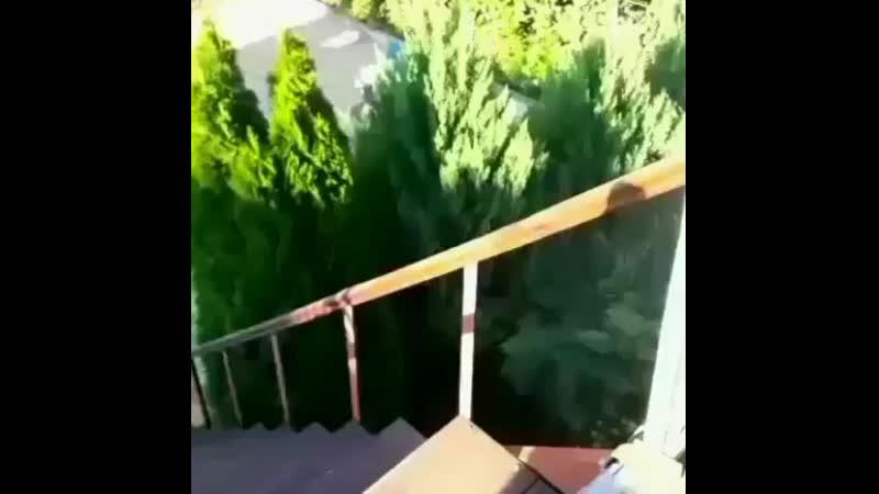 Вид на нашь двор со второго этажа