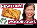 Isaac Newton's Woodblocks Objectivity 178