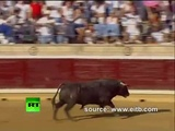 Spain Rampage Raging bull charges into crowd injuring 40 at bullfight #coub