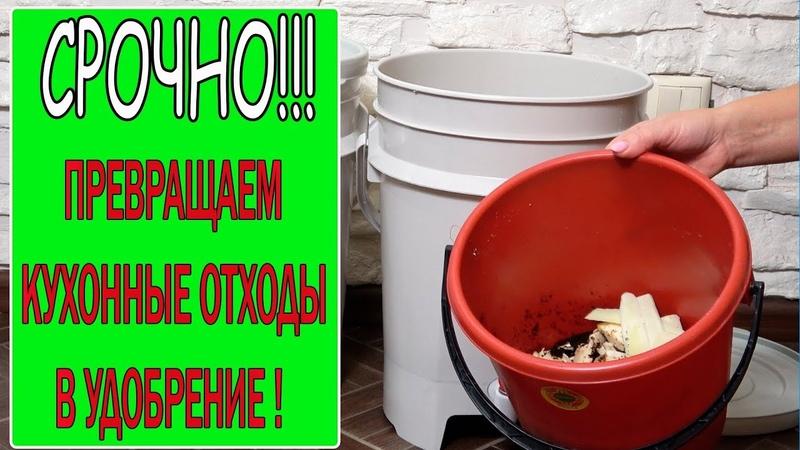 Два вида удобрений из ферментированных кухонных отходов с применением ЭМ препарата