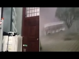 Violent 134mph winds wreaks havoc in China as powerful gusts uproot trees and blow away COACHES