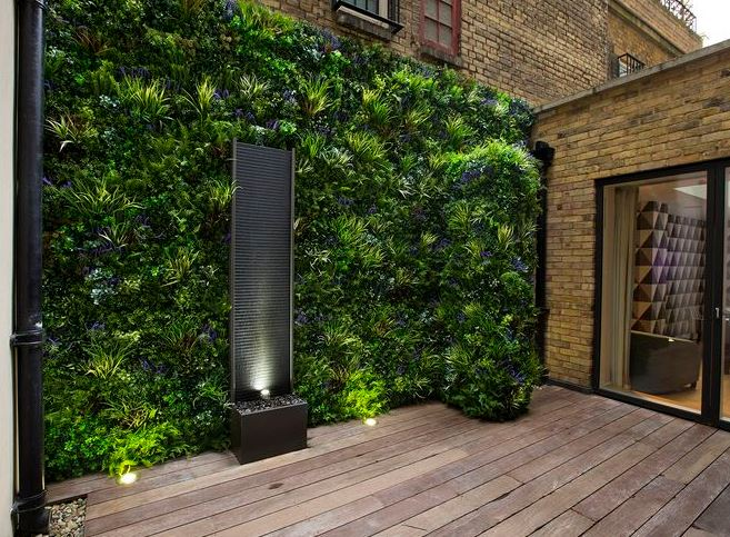 Фитостена - вертикальный сад, вертикальное озеленение