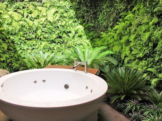 Вертикальное озеленение ванной комнаты, фитостена в доме