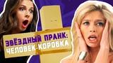 Звездный пранк ЧЕЛОВЕК-КОРОБКА (ST, Нюша, Вера Брежнева, Сергей Лазарев и Глюкоза)