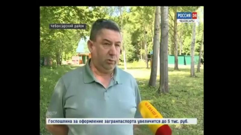 Предпринимателю из Чебоксарского района грозит штраф за использование лесных угодий не по назначению