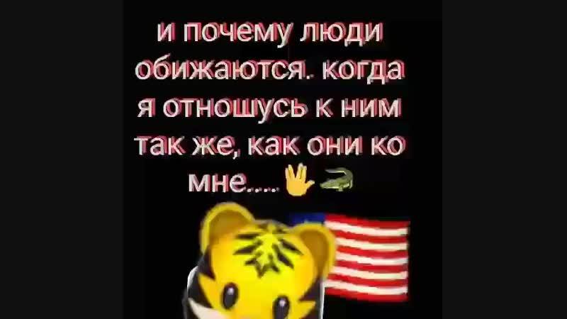 _za_magomadov755BsK6B8EFawi.mp4