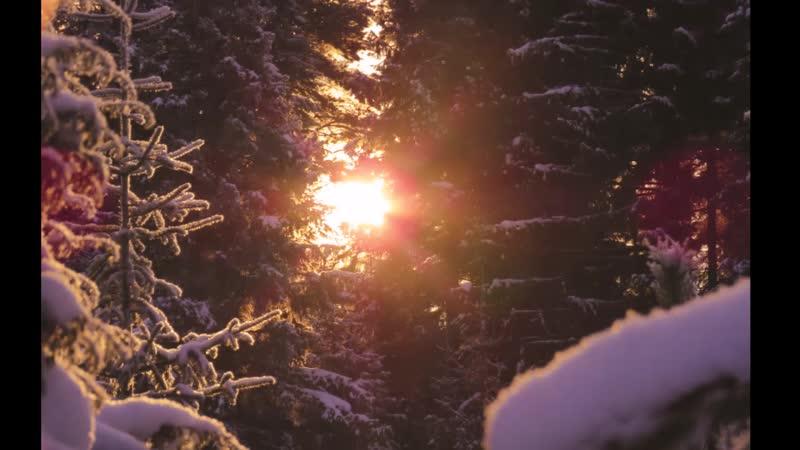Альбом Зимнее солнце _Средний