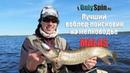 Лучший воблер для поиска на мелководье Malas Проводки OnlySpin