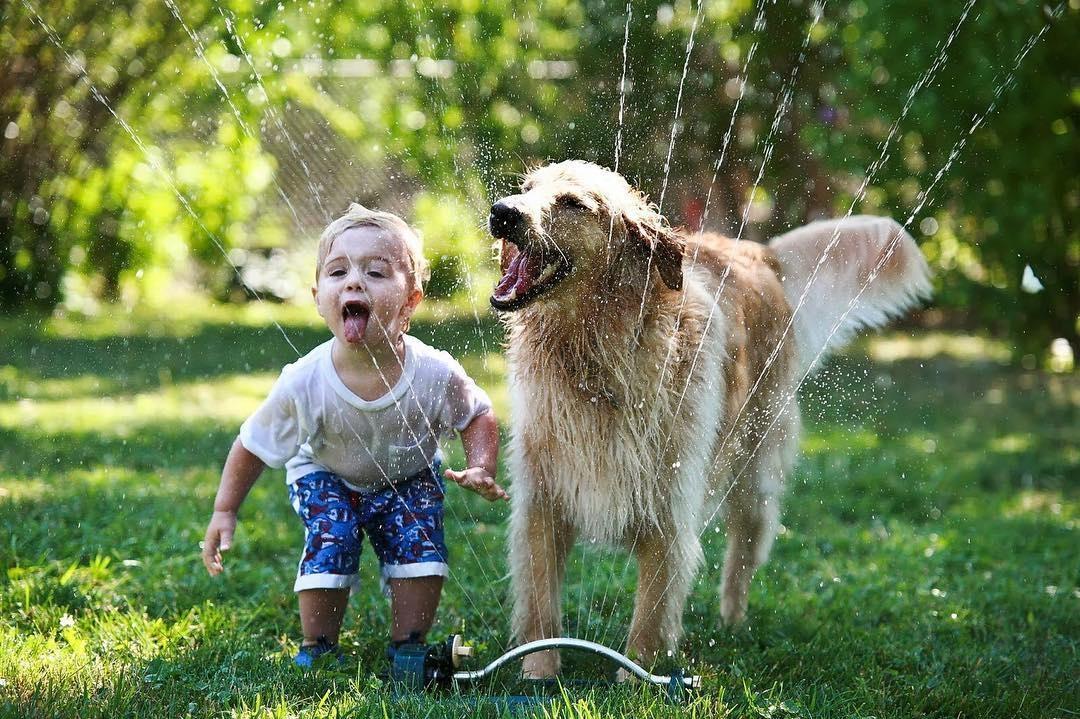 Смешные фото дети с животными, картинки