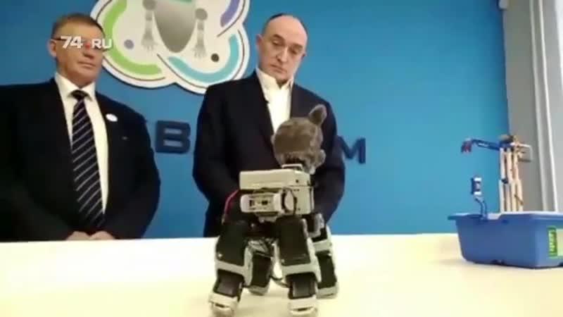Ужасный робот кот