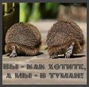 Андрей Самолёт фото #4