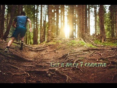 Бег 2 часа по дикой тропе в лесу | коротко о беге