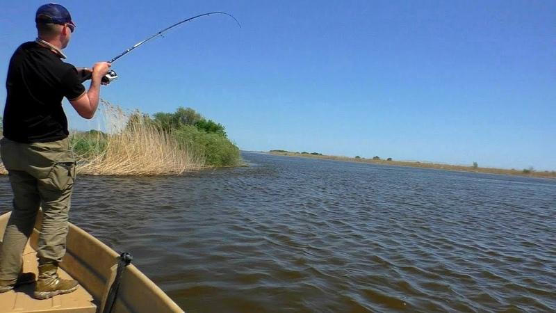 Что за монстр так клюет!? Только в Астрахани на спиннинг может быть такая рыбалка!