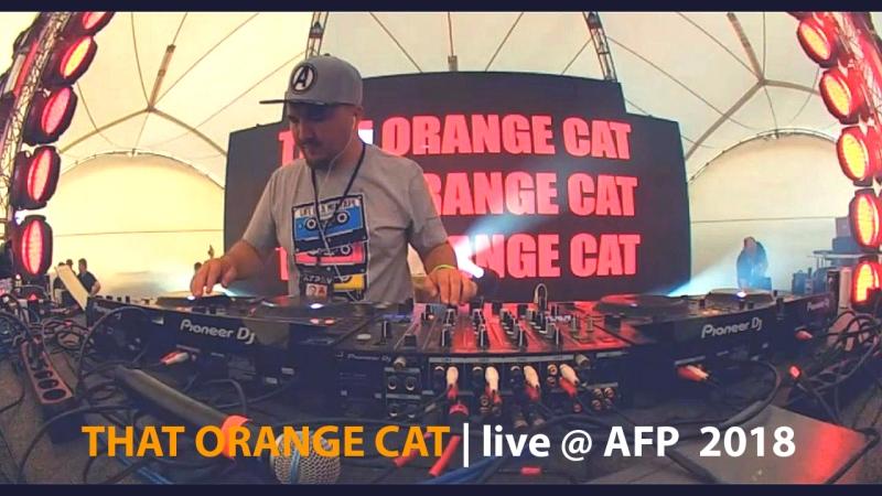 THAT ORANGE CAT (aka Kuraj-Bambey) live @ AFP 2018 (Russia)