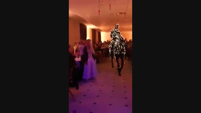Новогодний конь