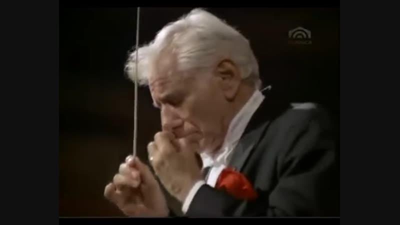 Sibelius-Symphonie-Nr-2-D-Dur-op-43-Leonard-Bernstein-Wiener-Philharmoniker-360p