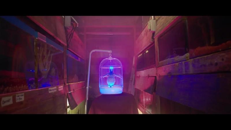 The Parakit feat. Alden Jacob - Save Me