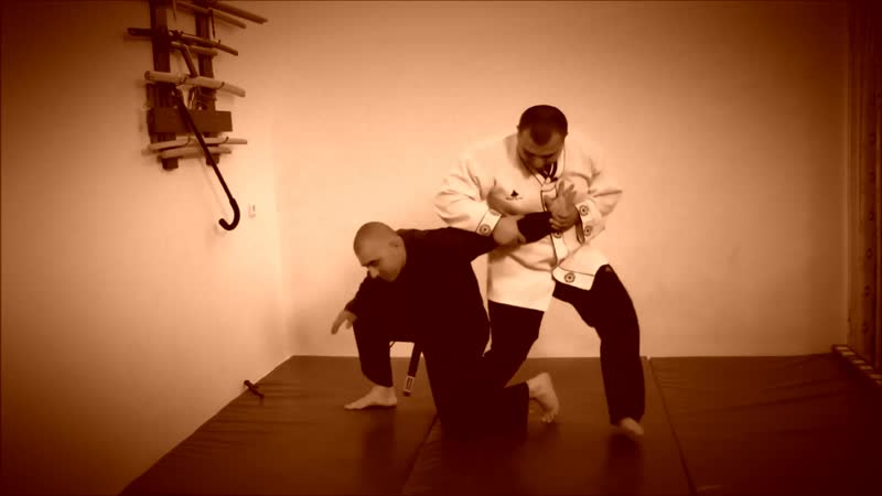 Rebel Hapkido Series 합기도 By Vidadi Hajiyev (15)