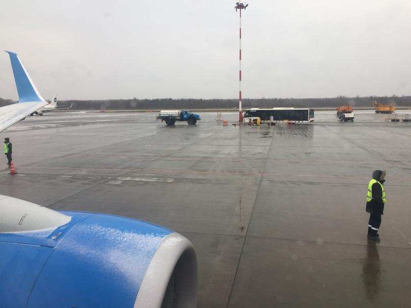 Отчет о путешествии в Италию Пиза и Флоренция. На земле идет снег, самолеты принимают душ из противообледенительного зелья.