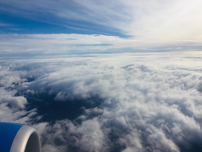 Отчет о путешествии в Италию Пиза и Флоренция. Ясно, солнечно и невероятно красиво