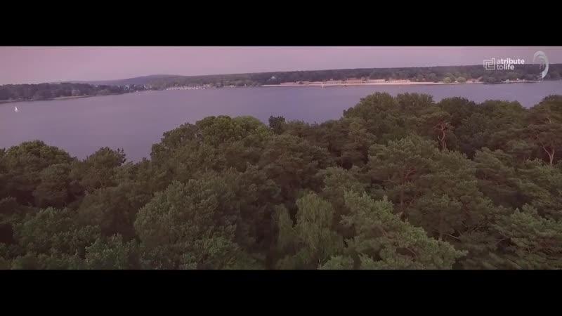 Dennis Sheperd Katty Heath - Dare To Dream (Official Music Video)
