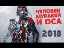 Человек-Муравей и Оса — Русский трейлер 2018