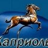 """Конный магазин - """"Каприоль"""" (Москва)"""