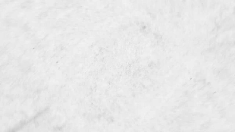 [Роман Курбатов ПИТБАЙК КРОСС] Два бензобака на одном мотоцикле! Новинка BSE Z6 250сс