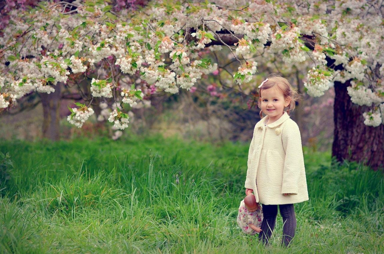Наблюдения с детьми 6 лет весной