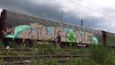 FRET FR8 WHOLECAR ANGRY BIRDS