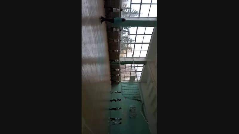 Live Школьный спорт МР Туймазинский район РБ