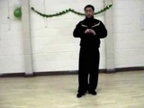 Chen Style Tai Chi Fa Jin (Power Out) - Elbow 2