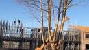 Монолитный дом Двойной каркас ЛСТК полистиролбетон /Monolithic house Double wall LGSF