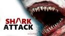 АКУЛЫ ПРОТИВ ЛЮДЕЙ/SHARK ATTACK DEATHMATCH 2