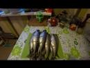 Рыба Горячего Копчения.