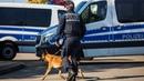 Tötete Migrant Krystian J. in Neumünster? – Fall laut Polizei kurz vor der Aufklärung