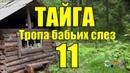 Тайга Тропа бабьих слез 11 из 16