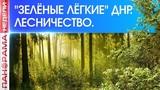 Лесничество ДНР: история, война, возрождение. 23.09.2018, «Панорама недели»