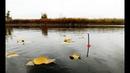 Рыбалка 2018 в ноябре на поплавок Ловля КАРПА И КАРАСЯ