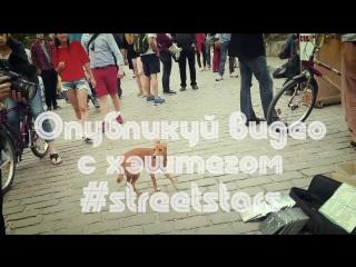 Street stars кастинг