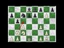 Karpov's Immortal Anatoly Karpov vs Veselin Topalov 1 0 Linares 1994