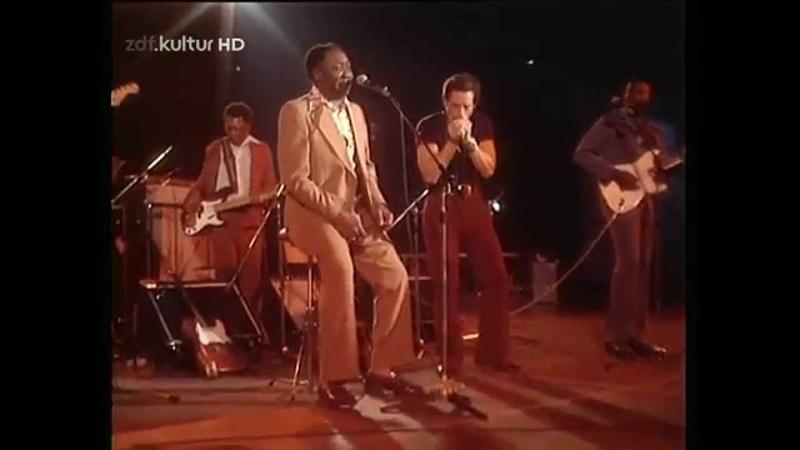 Muddy Waters Got My Mojo Workin HD