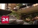 Трое детей погибли, подорвавшись на мине под Горловкой, еще один ребенок ранен - Россия 24