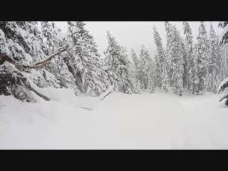 Backcountry Pow in Washington