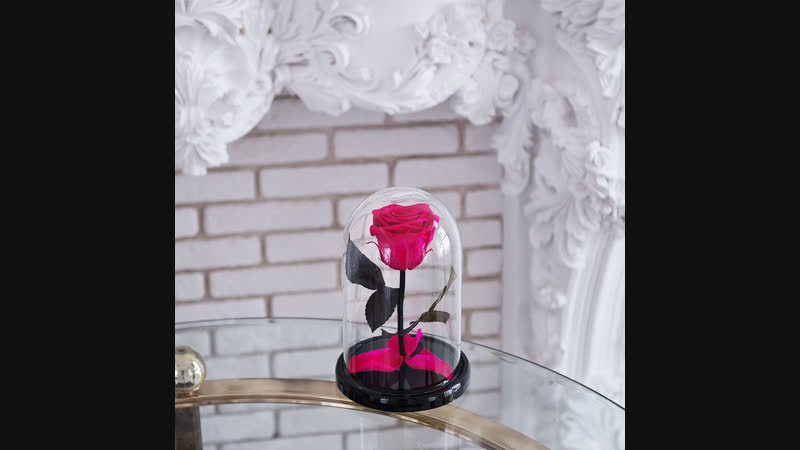 Живая роза в колбе в ассортименте